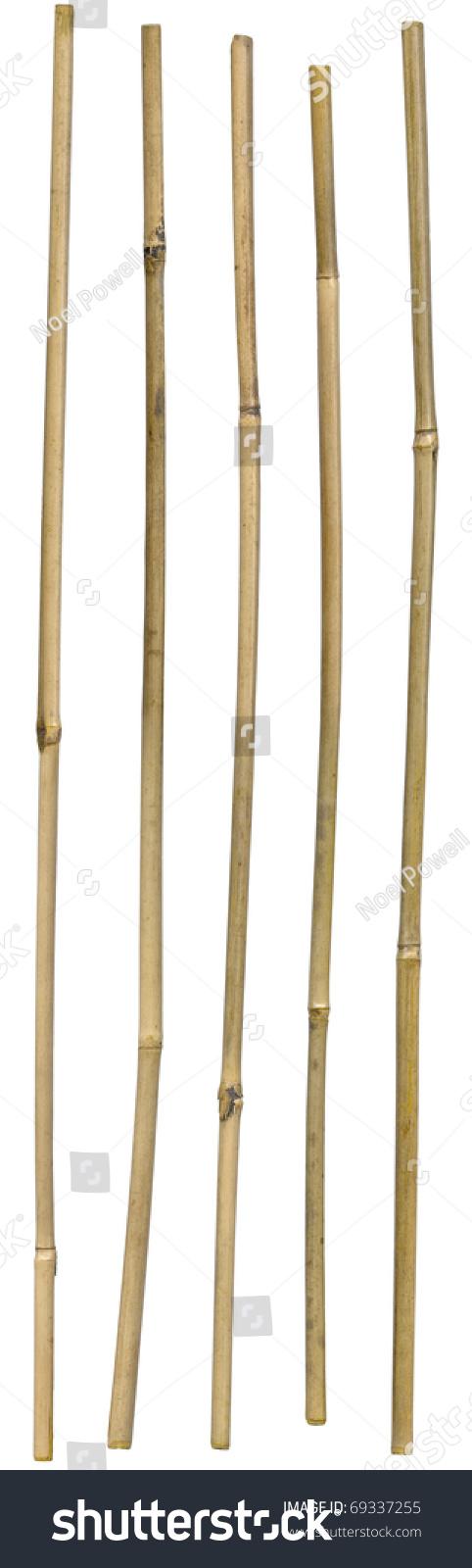 Five Dried Ornamental Bamboo Sticks Very Stock Photo ...