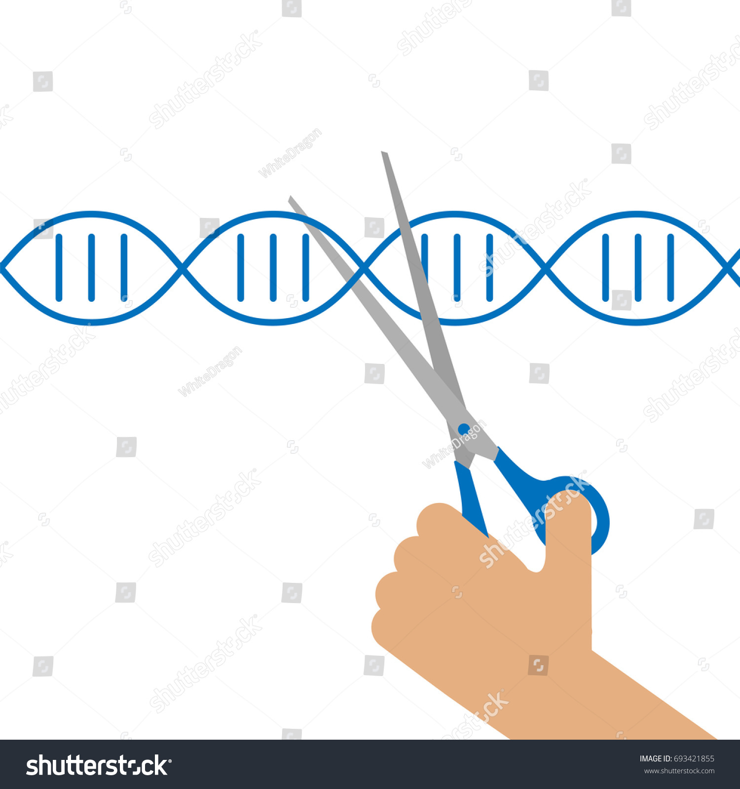 Dna Structure Stock Vector Illustration Of Helix Cell Manual Guide