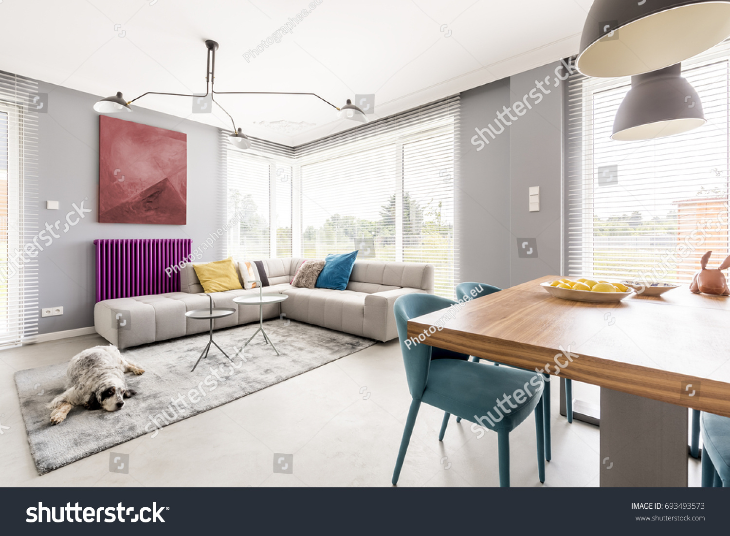 Contemporary Living Room For Family With Gray Walls Beige Corner Sofa Big Windows