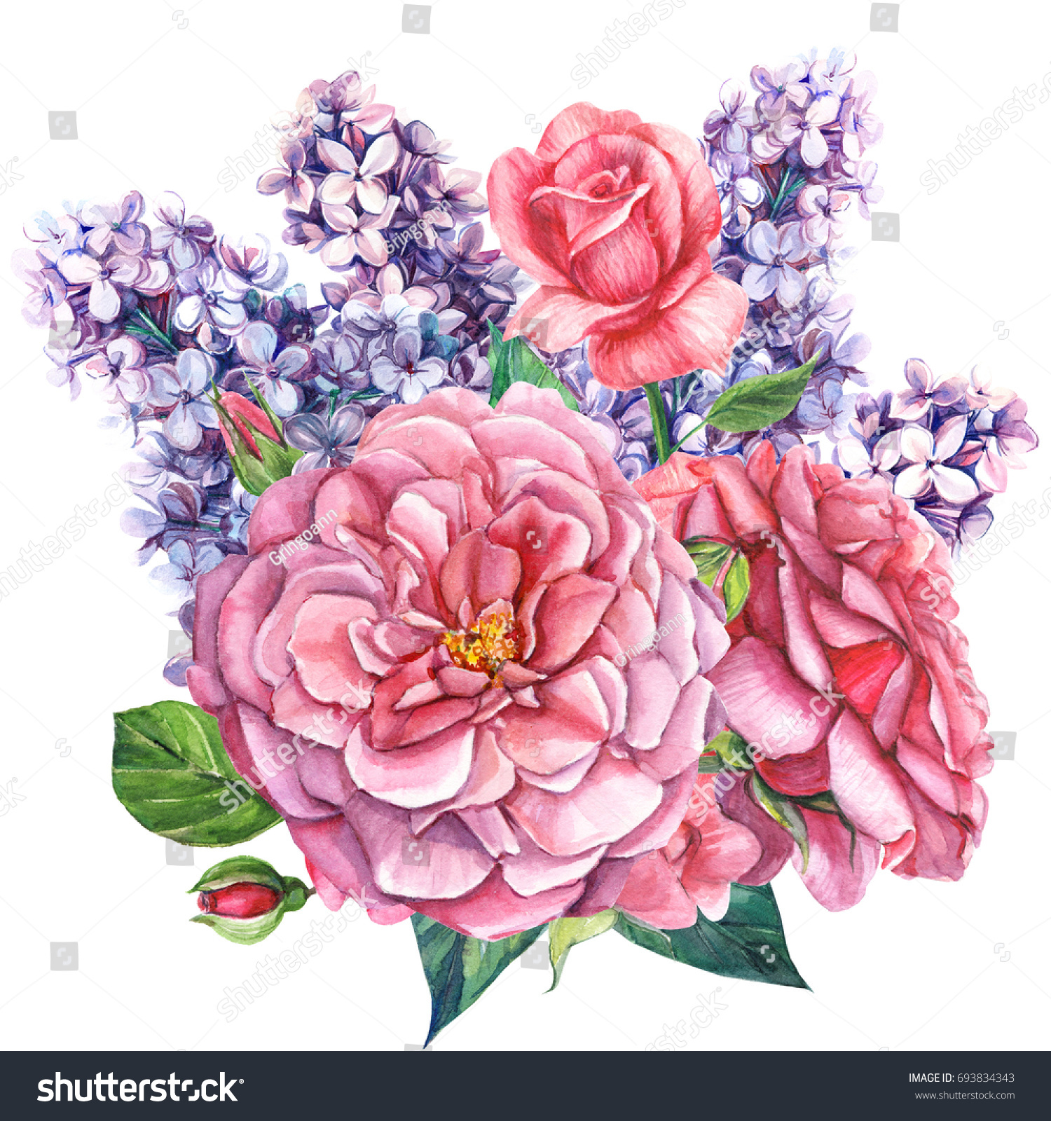 Roses Lilacs Bouquet Beautiful Flowers Watercolor Stock Illustration ...