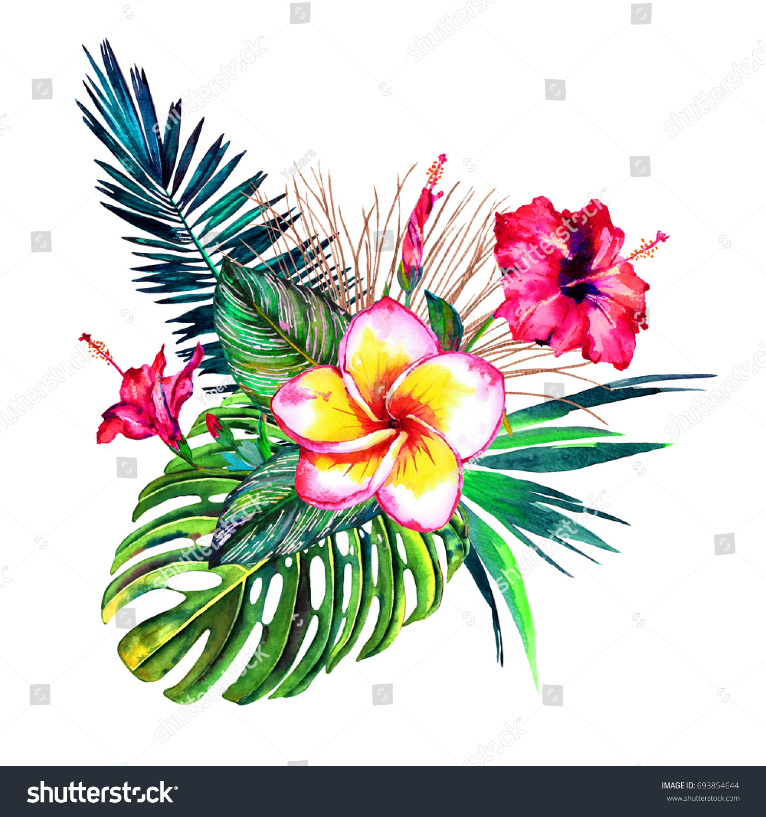Tropical bouquet watercolour exotic flowers hibiscus stock tropical bouquet watercolour exotic flowers of hibiscus and plumeria rain forest palm leaves izmirmasajfo