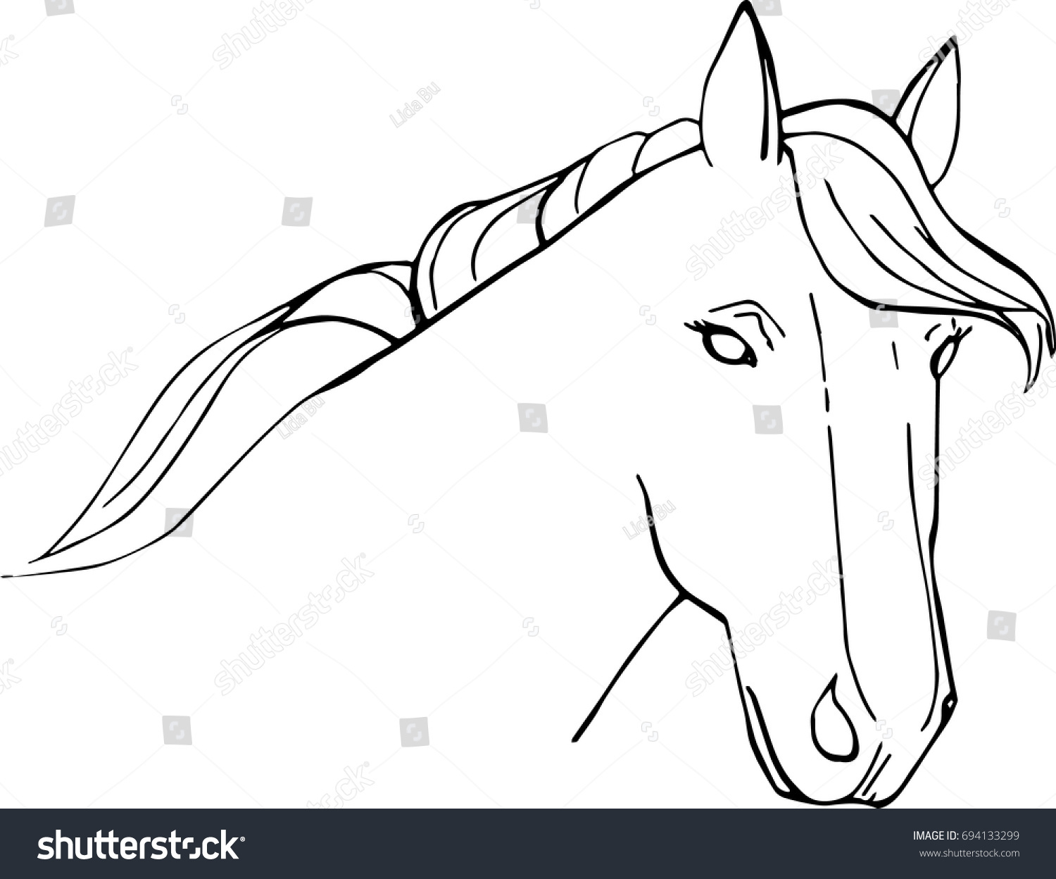 Vector Illustration Horse Head Outline Isolated Stock Vector ...