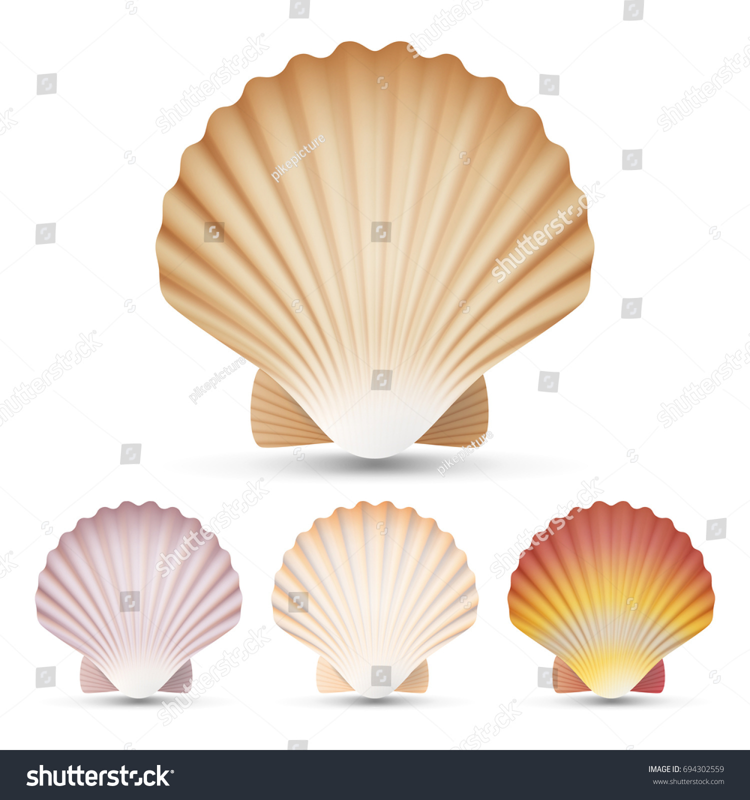 Scallop seashell set vector exotic souvenir stock vector 694302559 scallop seashell set vector exotic souvenir scallops shell isolated on white background illustration biocorpaavc Image collections
