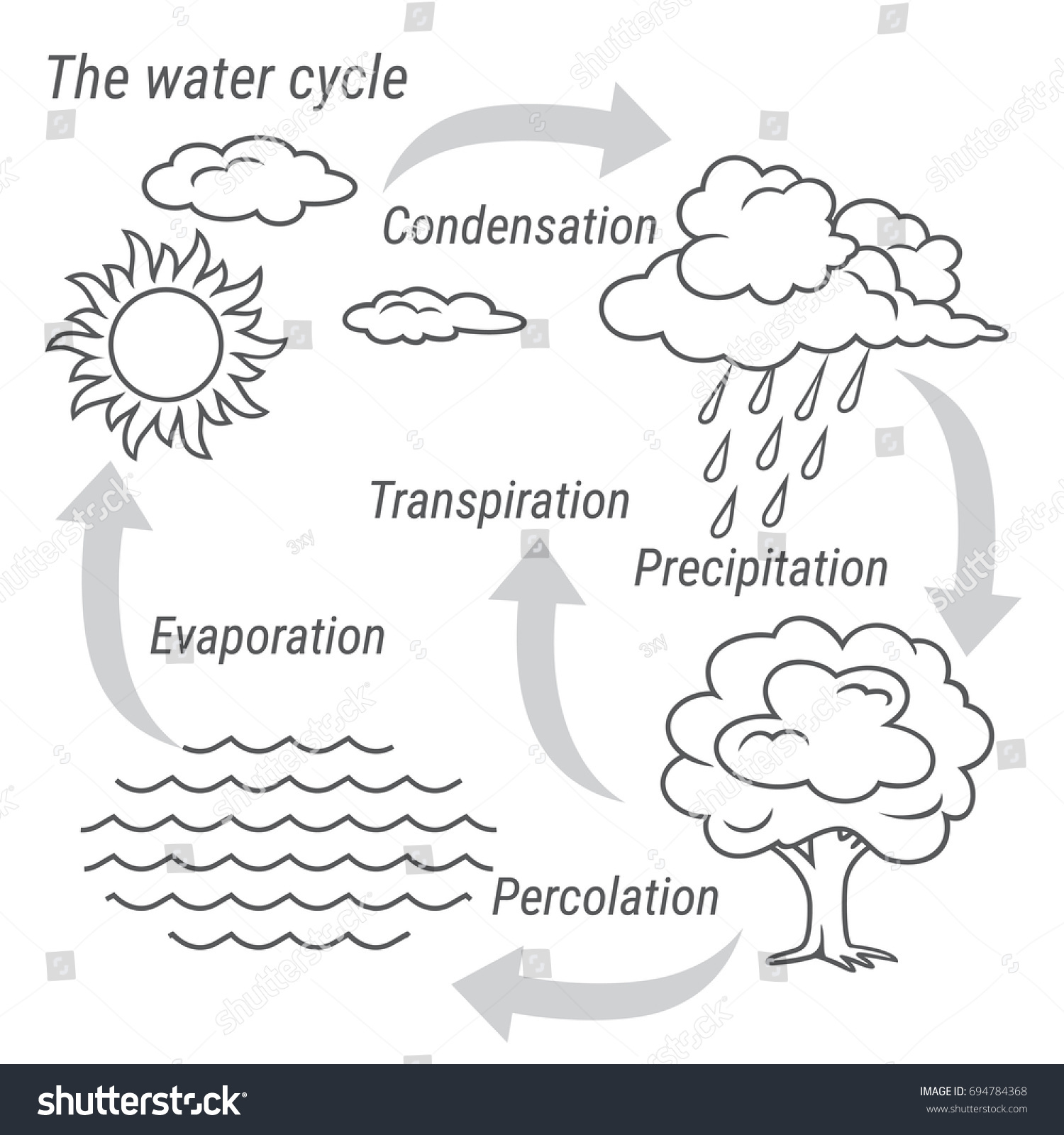 stock vector vector schematic representation of the water cycle in nature illustration of diagram water cycle 694784368 definition for water cycle diagram timeline for project management biocycle wiring diagram at arjmand.co