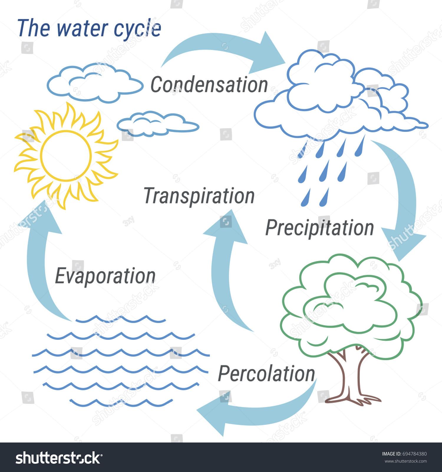 Diagram for water cycle 2003 formula computer definition kohler vector schematic representation water cycle nature stock vector stock vector vector schematic representation of the water ccuart Choice Image