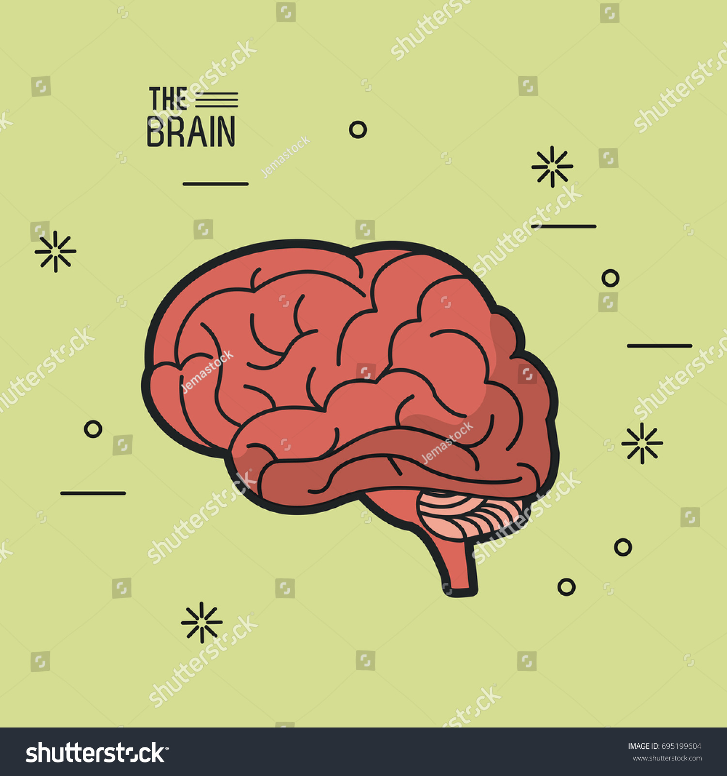Colorful Poster Brain Light Green Background Stock Vector 695199604 ...