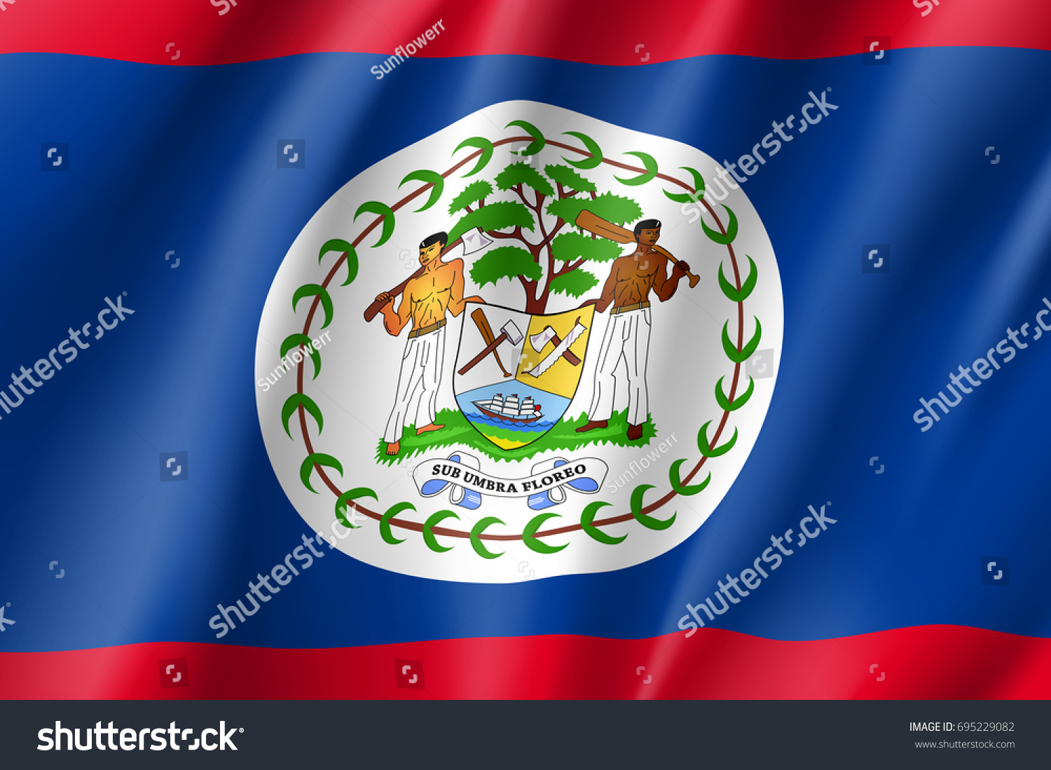 Flag belize realistic icon state insignia stock vector 695229082 flag belize realistic icon state insignia of the nation in realistic style on the entire biocorpaavc Image collections