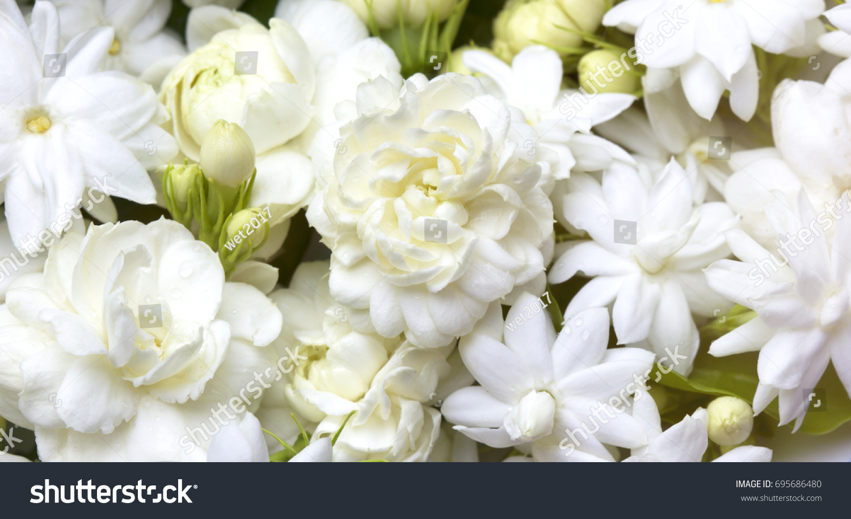 White jasmine flowers fresh flowers natural stock photo 100 legal white jasmine flowers fresh flowers natural backgrounds izmirmasajfo