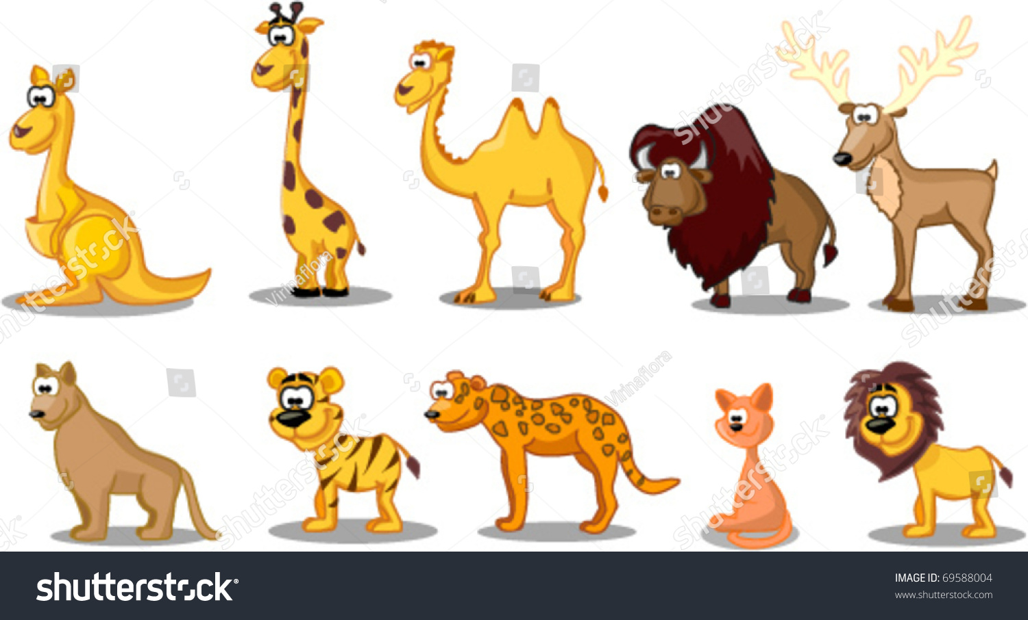 set animals including kangaroos giraffes camels stock vector
