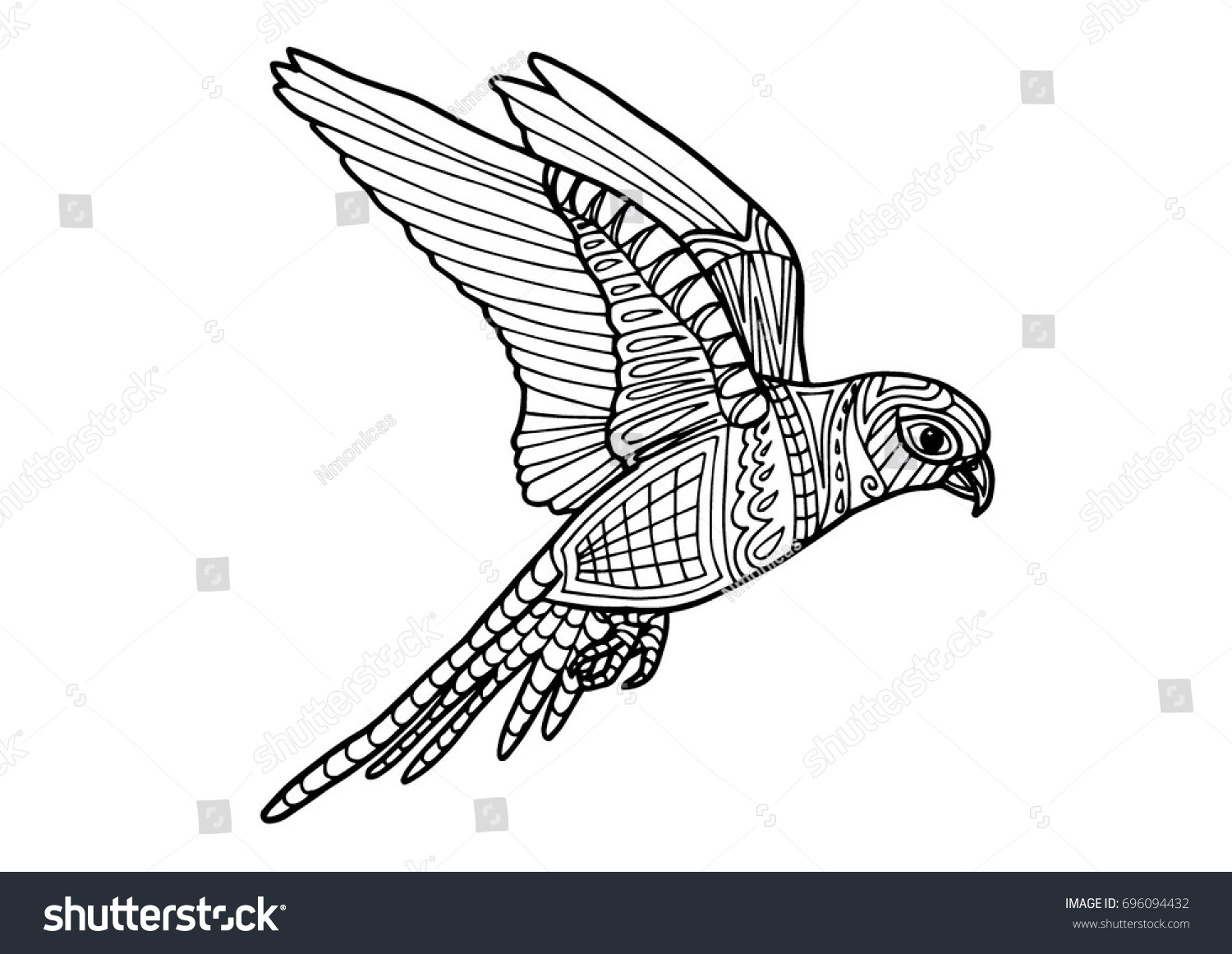 coloring page book parrot bird color stock vector 696094432