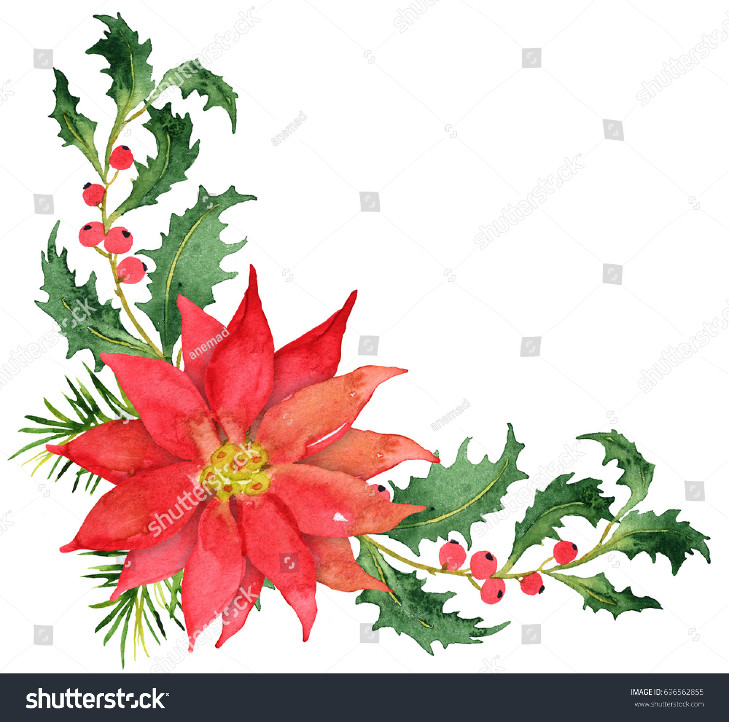 christmas bouquet poinsettia berries stock illustration 696562855