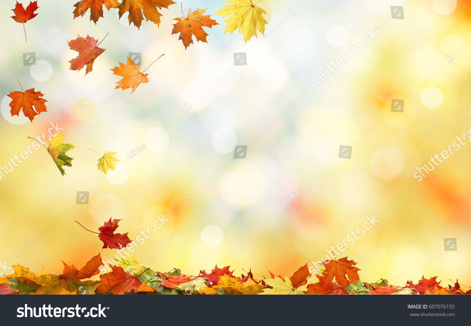 Falling autumn maple leaves natural background .Colorful foliage  #697076155