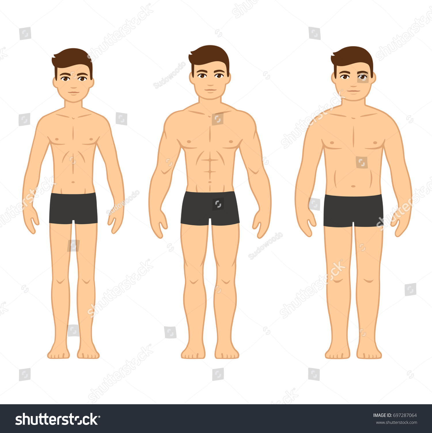 Male body types diagram ectomorph skinny stock vector 697287064 male body types diagram ectomorph skinny mesomorph muscular and endomorph pooptronica