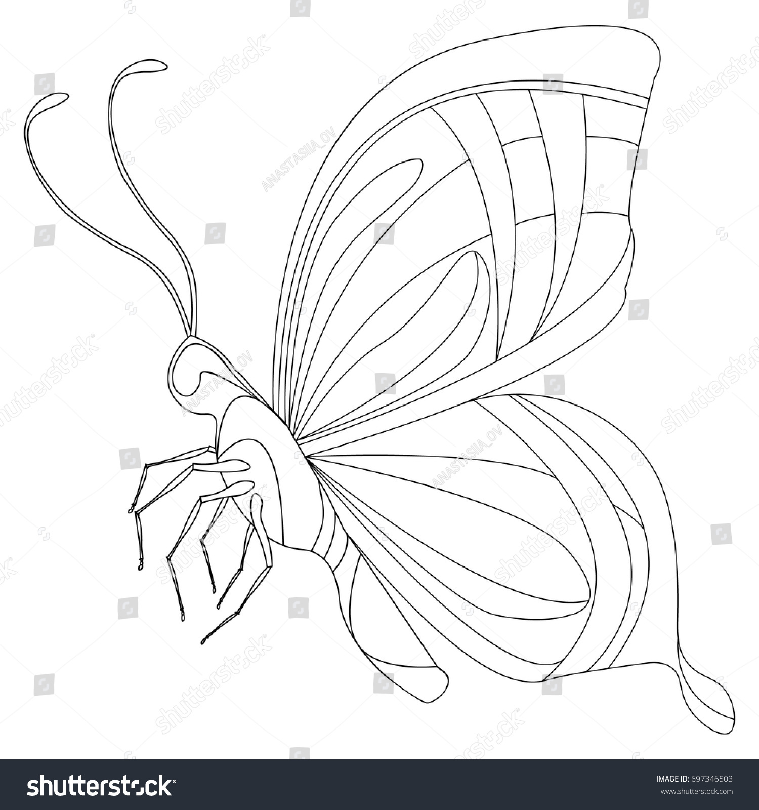Coloring Page Butterfly Coloring Page Decorative Stock Vector ...