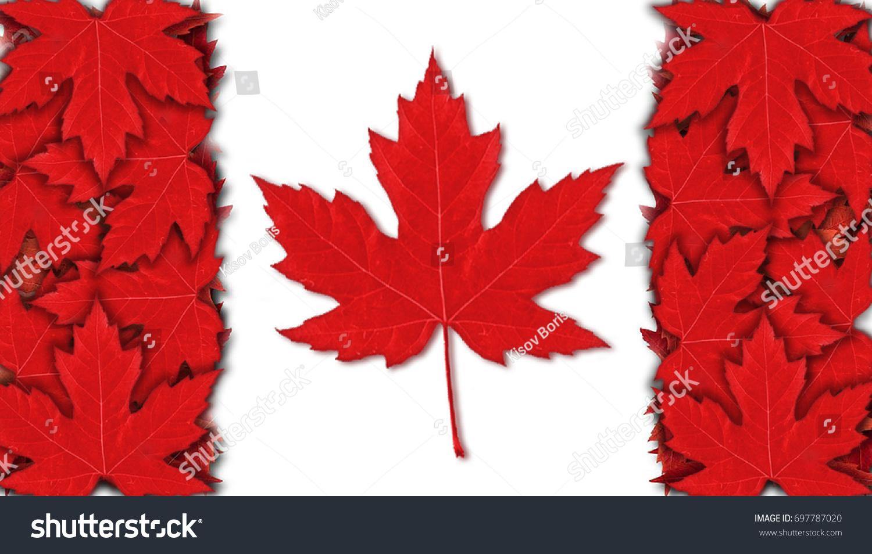 Canada Flag Red Leaf Design Red Stock Illustration 697787020
