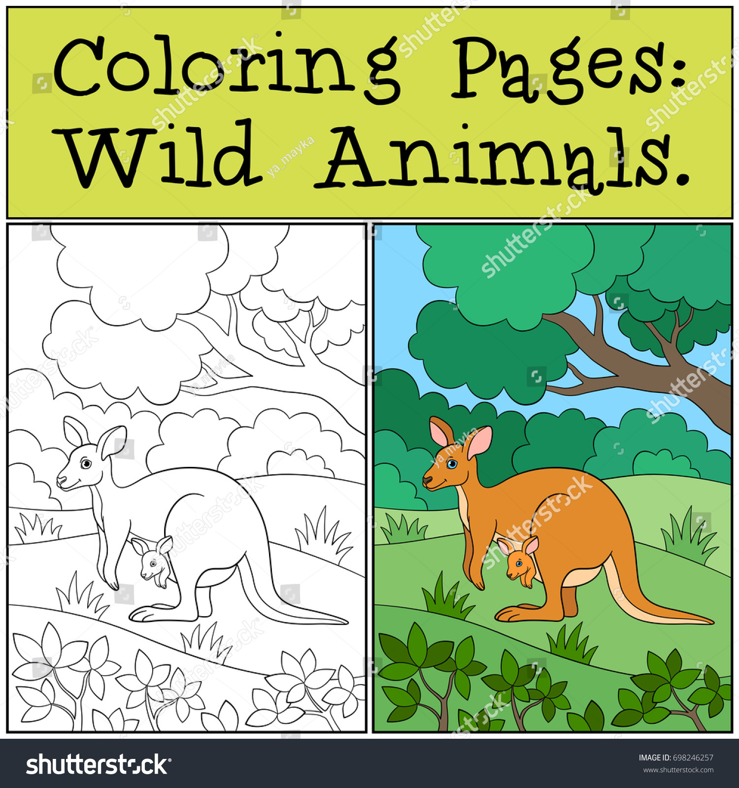 Coloring Pages: Wild Animals. Mother koala sits on the tree branch ...