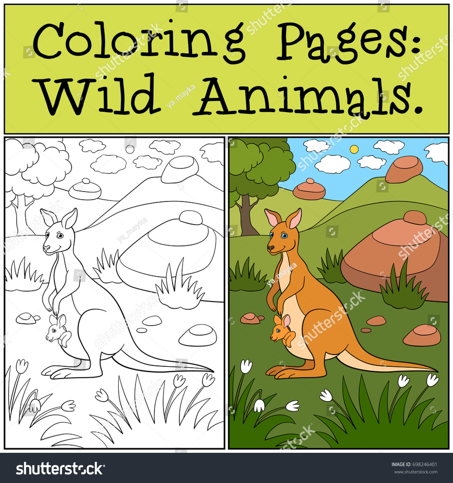 Coloring Pages Wild Animals Mother Kangaroo Stock Vector 698246401 ...