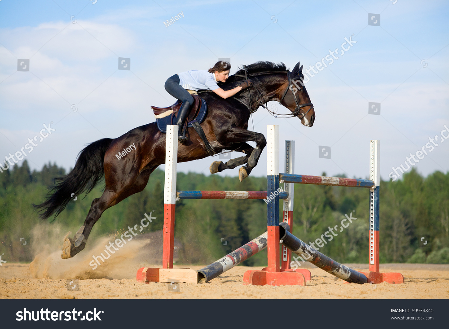 show jumping jump stock photo 69934840 shutterstock. Black Bedroom Furniture Sets. Home Design Ideas