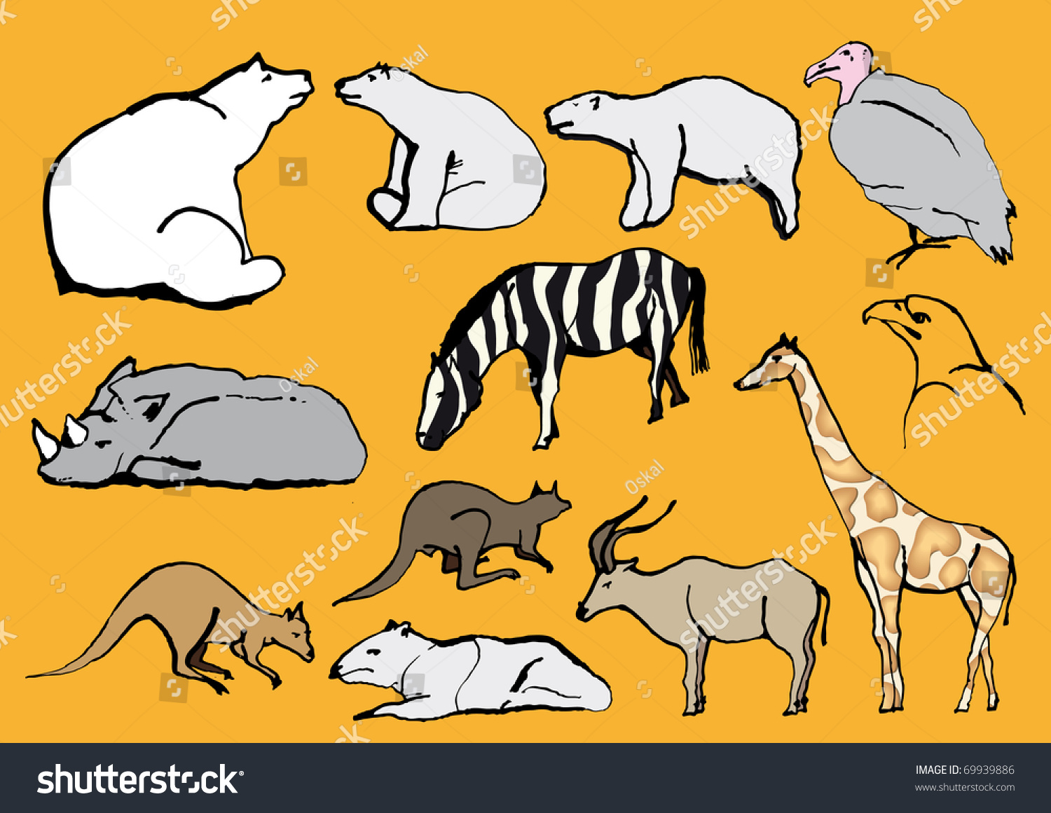 Line Drawings Of Zoo Animals : Line drawing exotic animals zoo stock vector illustration