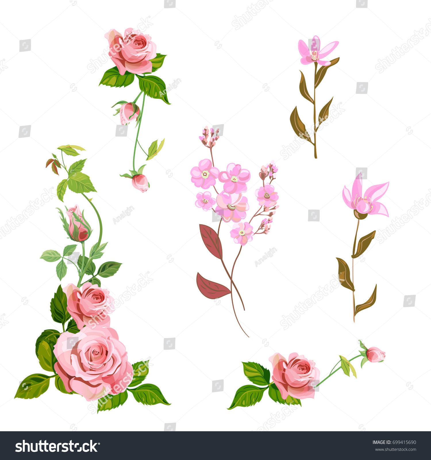 Set Of Curly Branches Of Red Rose And Small Pink Forget Me Not