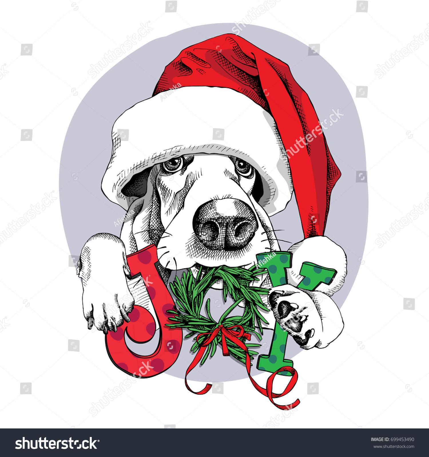 Christmas Card Portrait Basset Hound Santas Stock Vector (Royalty ...