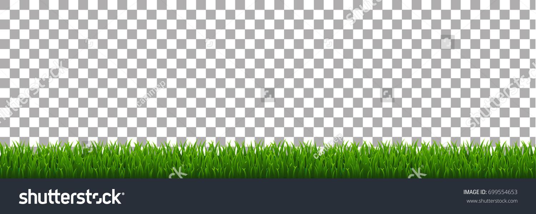Green Grass Stock Vector (2018) 699554653 - Shutterstock