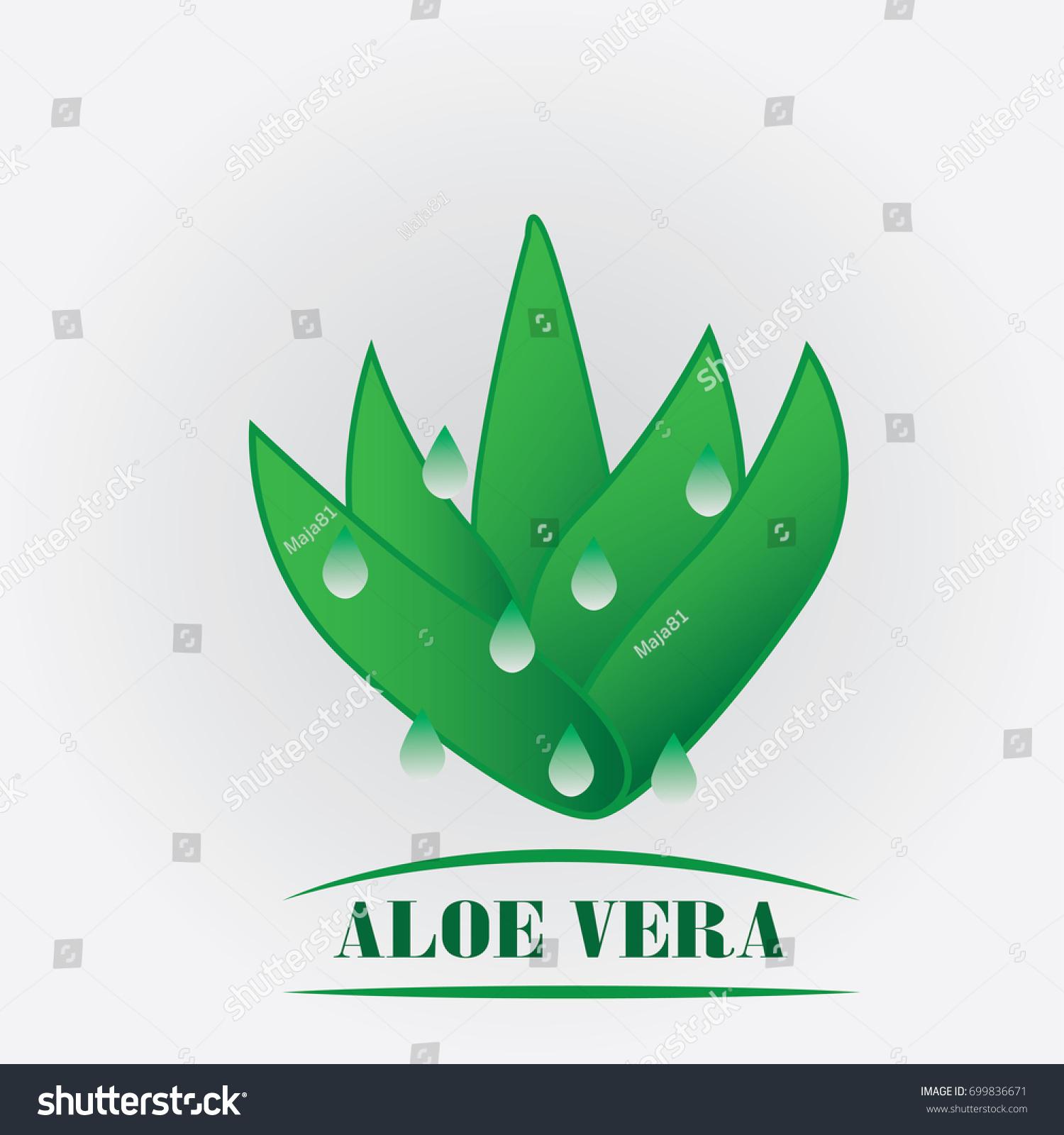 Etiket: Aloe Vera