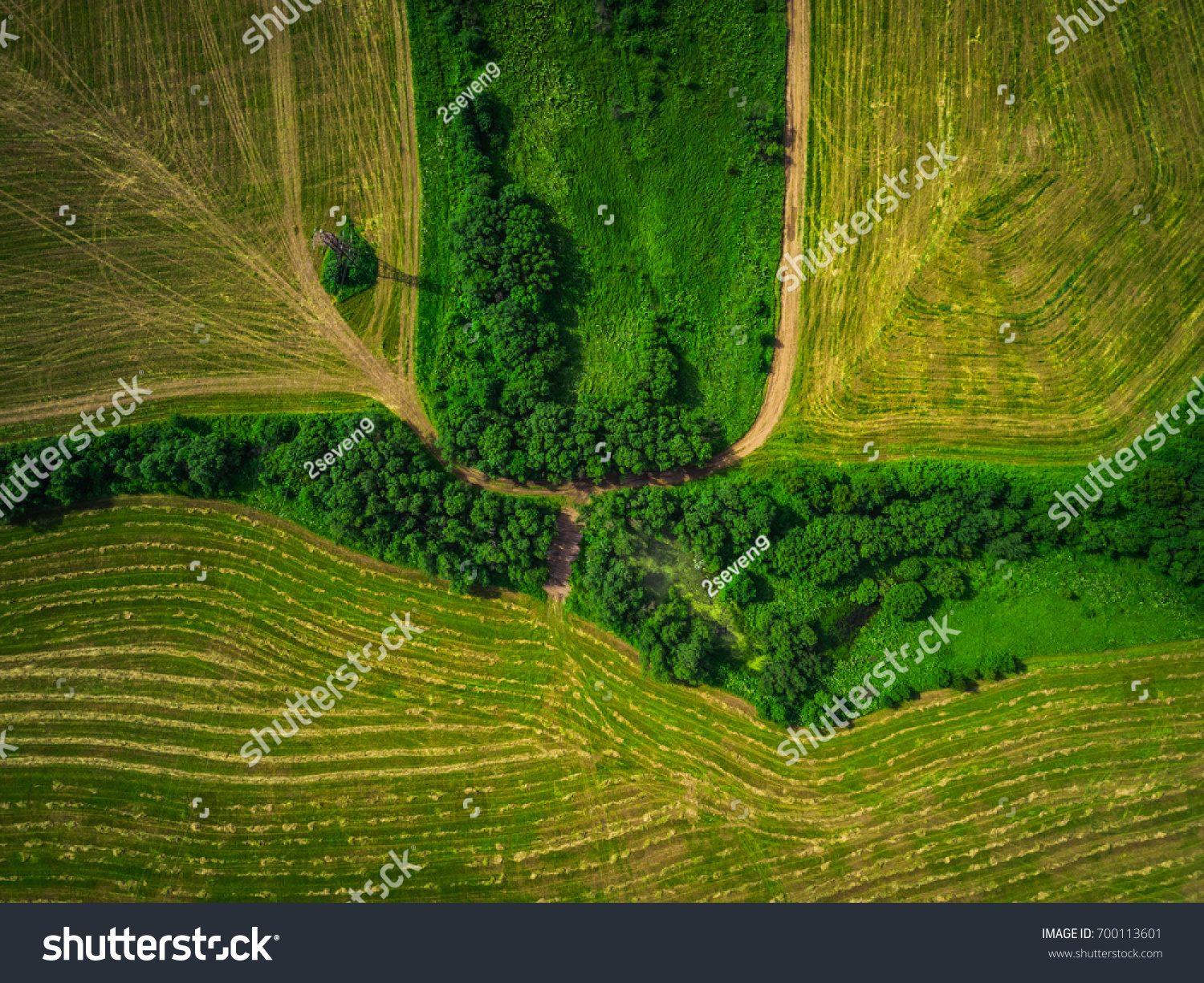 grass field aerial. Top View Aerial Shot Of Green Field With Grass And Trees