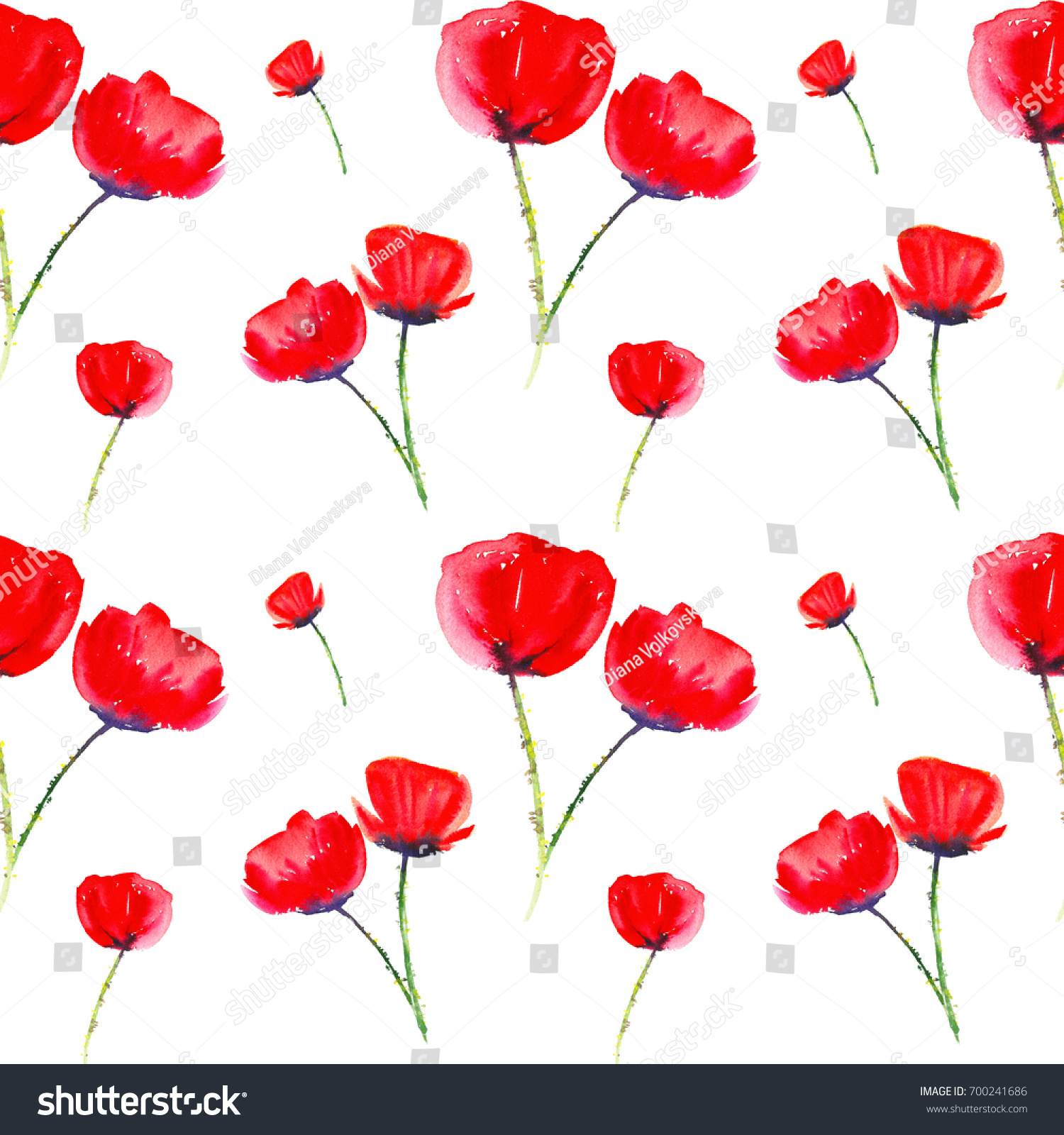 Seamless Red Poppies Watercolor Painting Poppy Stock Illustration