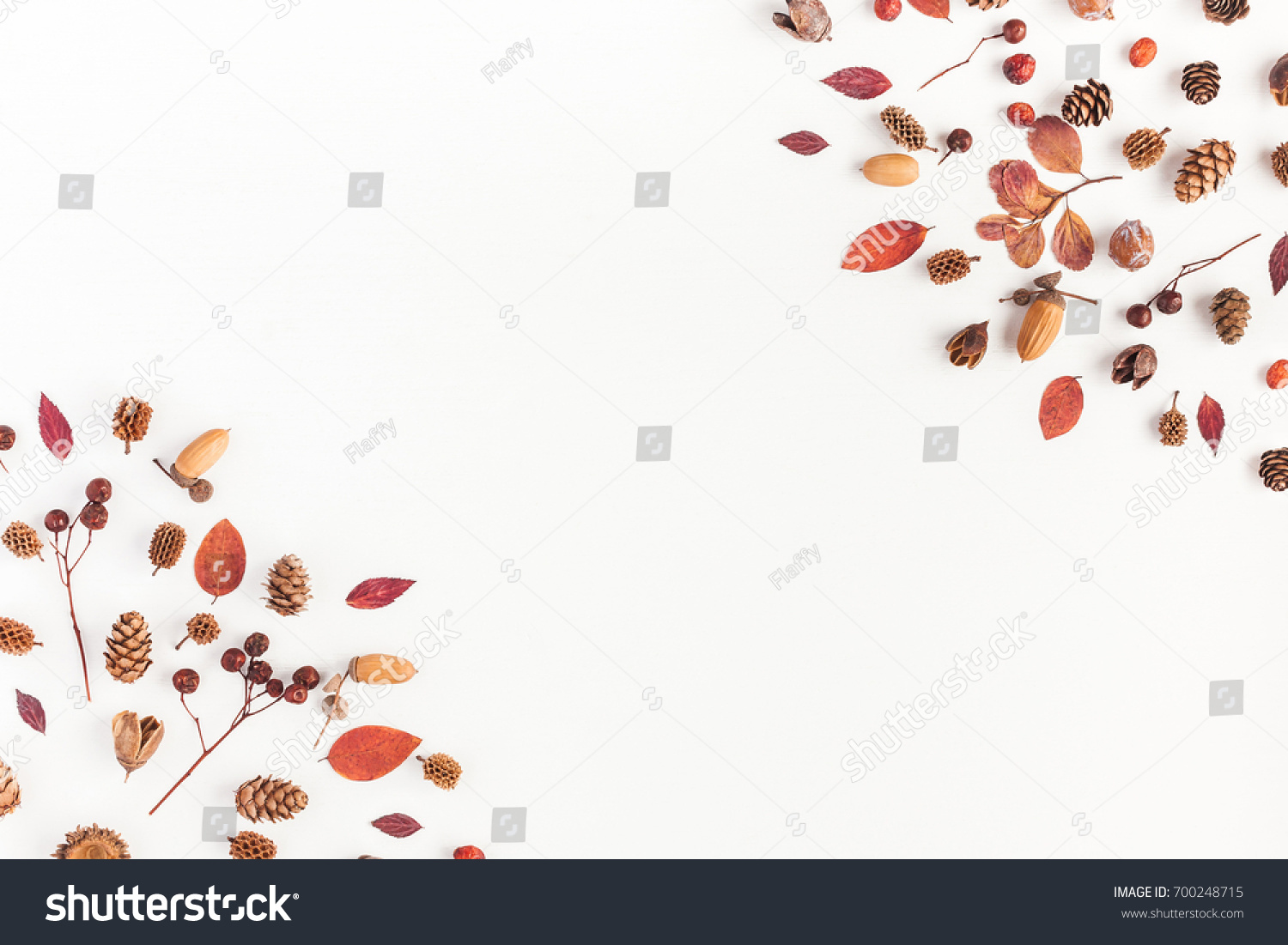 Autumn composition. Frame made of autumn leaves, acorn, pine cones on white background. Flat lay, top view, copy space #700248715