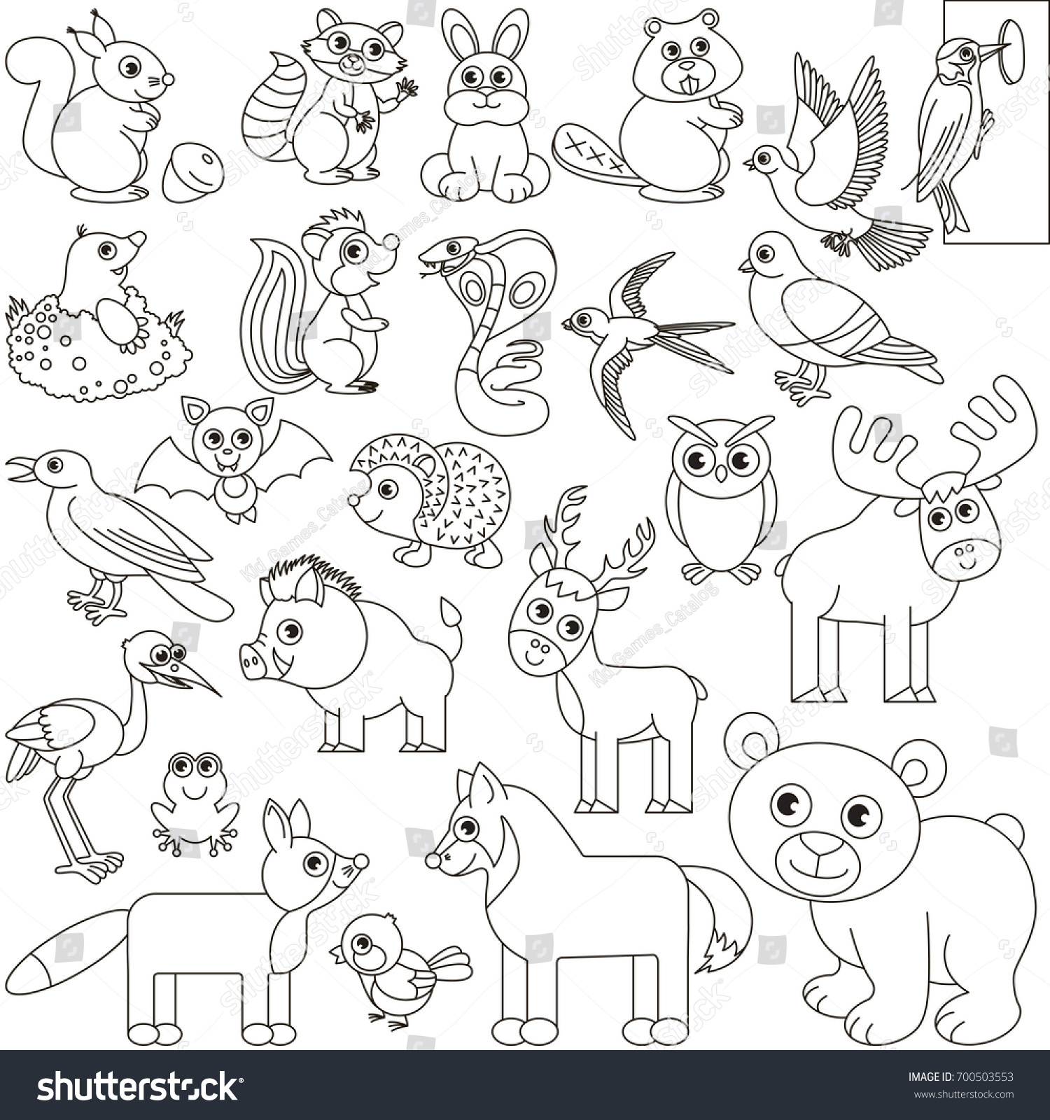 Forest Animals Elements Set Collection Coloring Stock Vector