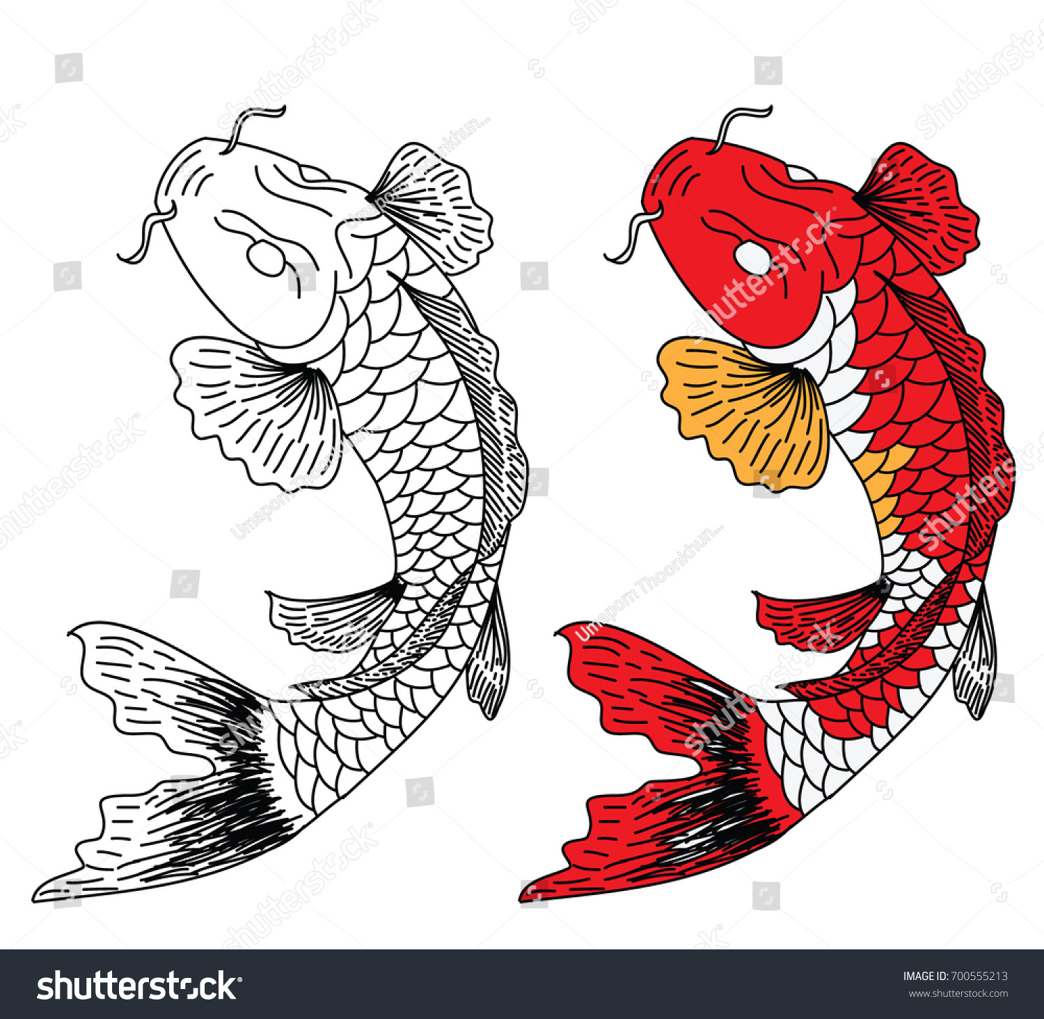 Hand Drawn Line Art Fish Koi Stock Vector 700555213 - Shutterstock