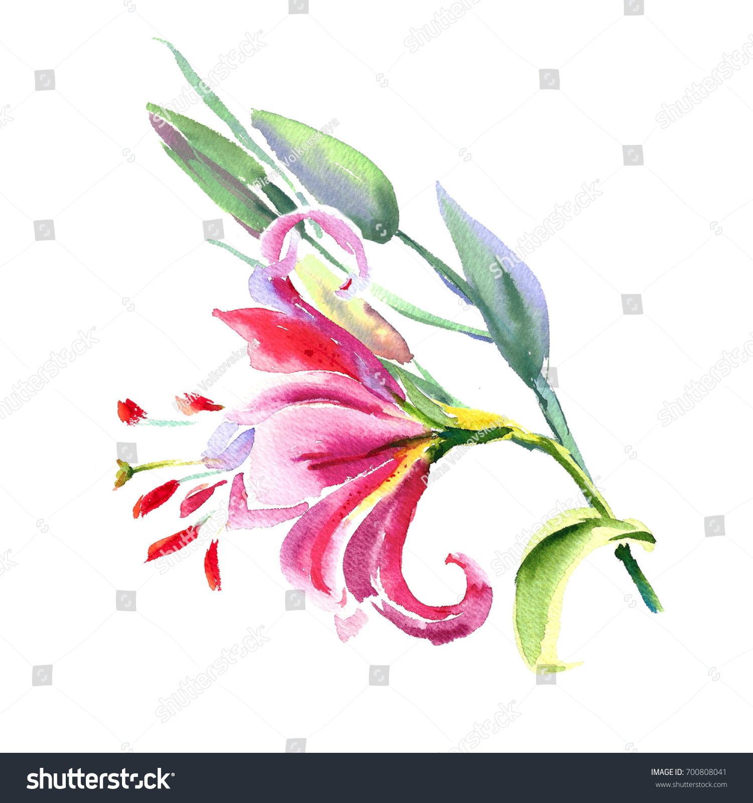 Pink Lily Painted Bouquet Watercolor Painting Wedding And
