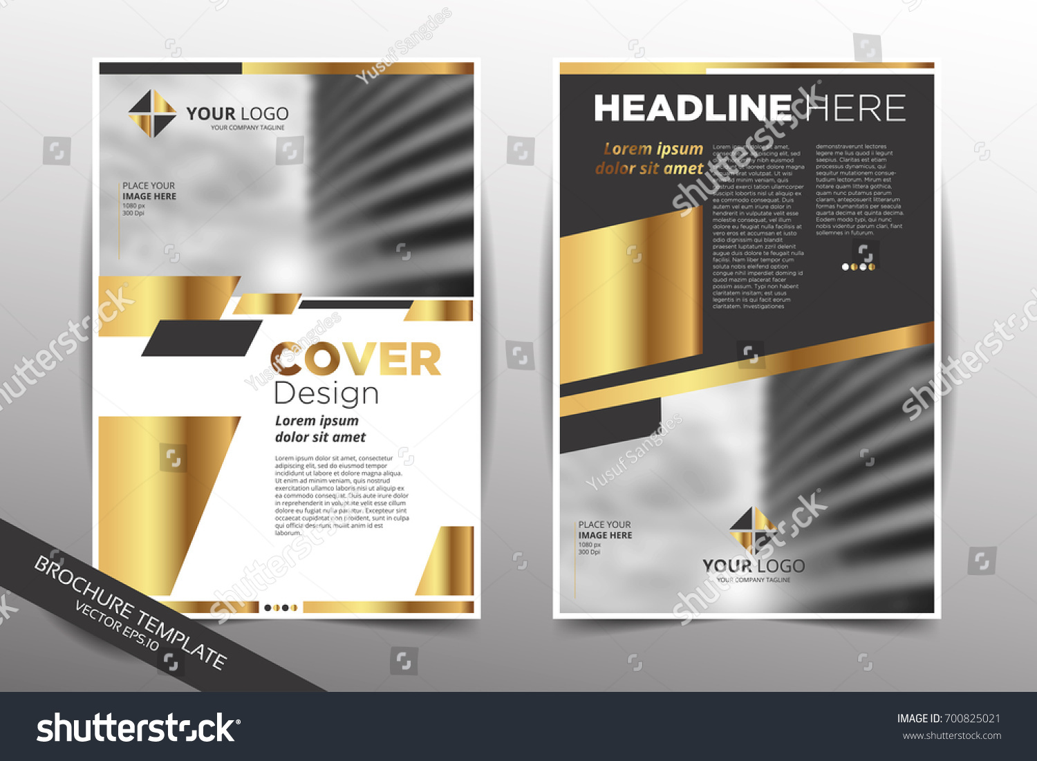 brochure cover flyer annual report pamphlet stock vector royalty