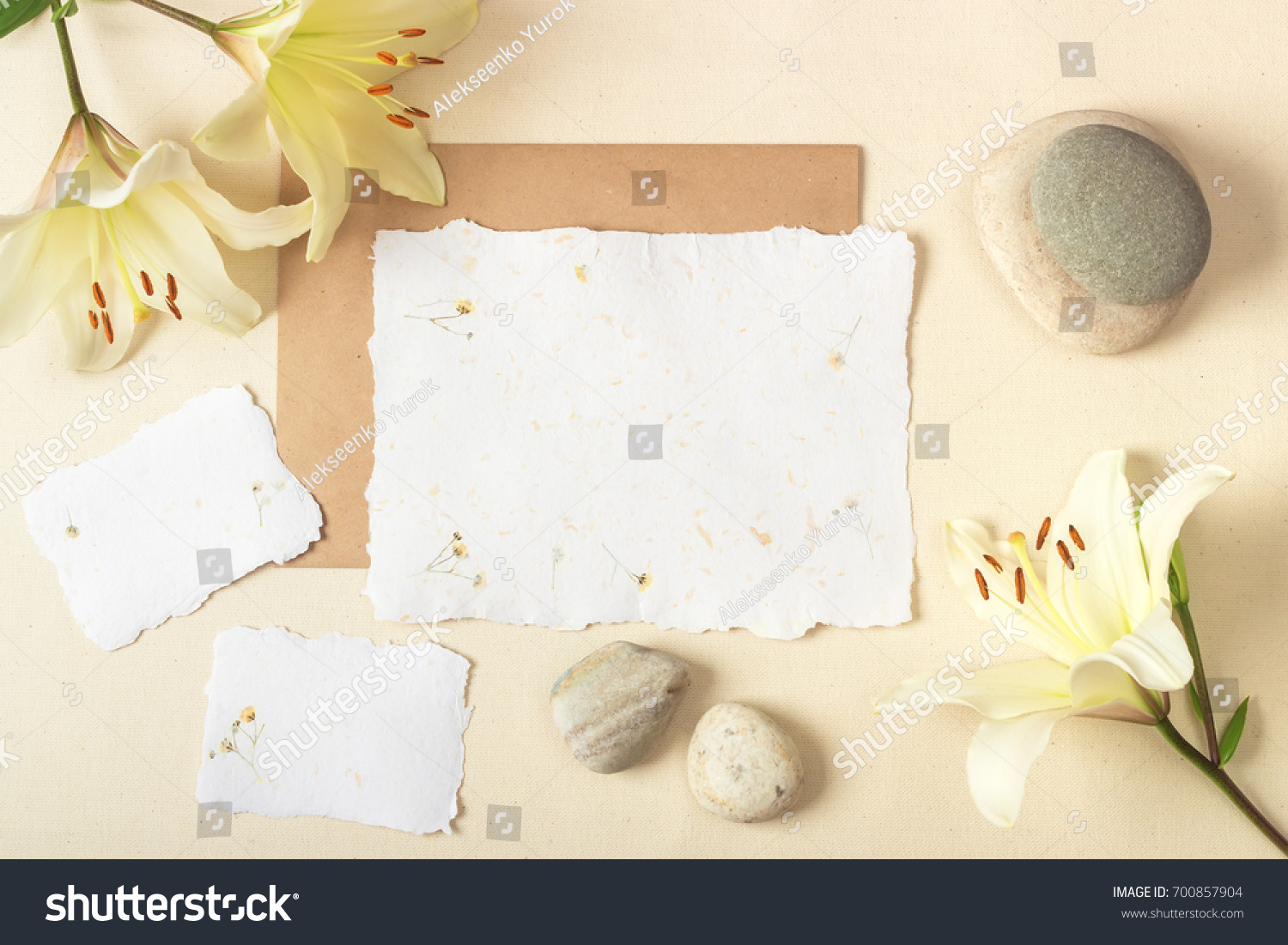 Mockup Postcard Made Handmade Paper Plants Stock Photo Edit Now