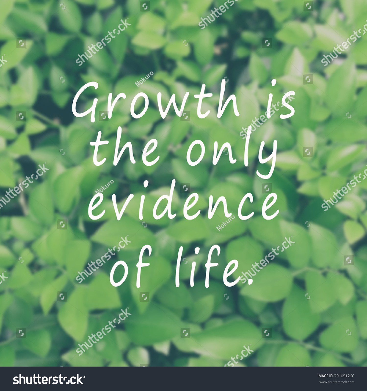 Life Inspiring Quotes Inspirational Quotes Growth Only Evidence Life Stock Photo
