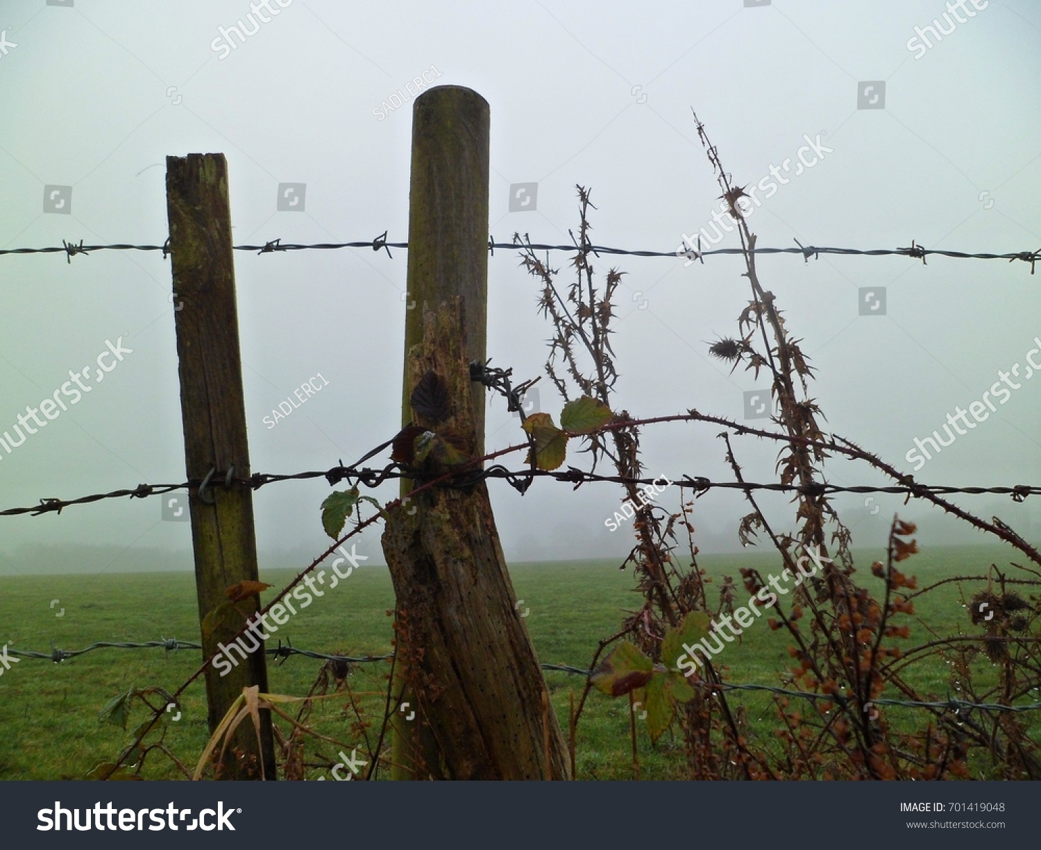Raindrenched Barbed Wire Fence Set Against Stock Photo (Edit Now ...