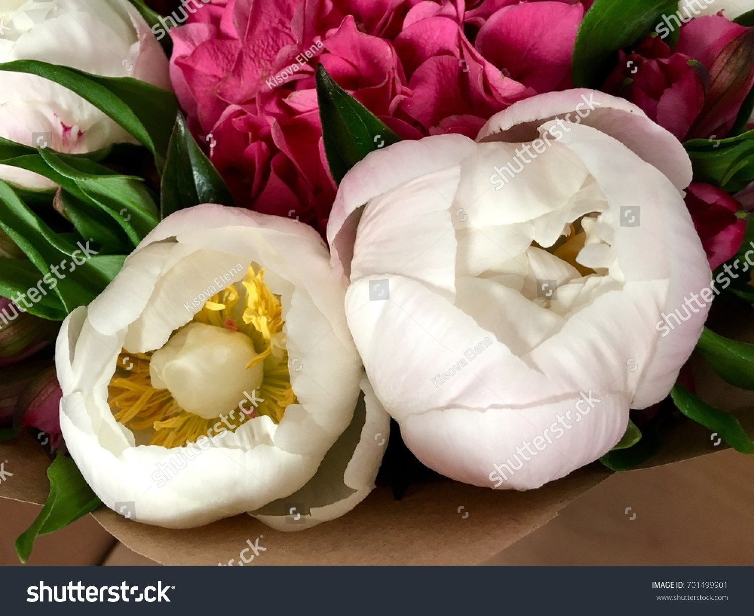 White Peony Big Flower Beautiful Bouquet Stock Photo Edit Now