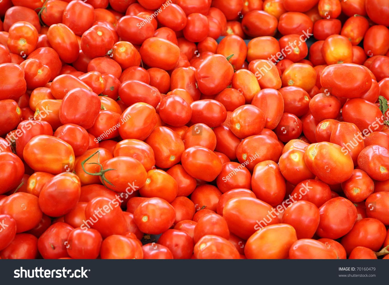 Fresh Red Tomatoes. Stock Photo 70160479 : Shutterstock
