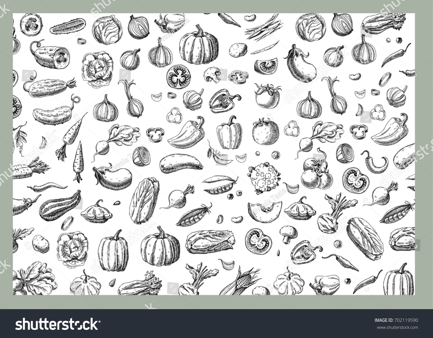 Background with Vegetables.Templates for label design with hand drawn linear vegetables. Can be used for vegan products, brochures, banner, restaurant menu, farmers market and organic food store #702119590