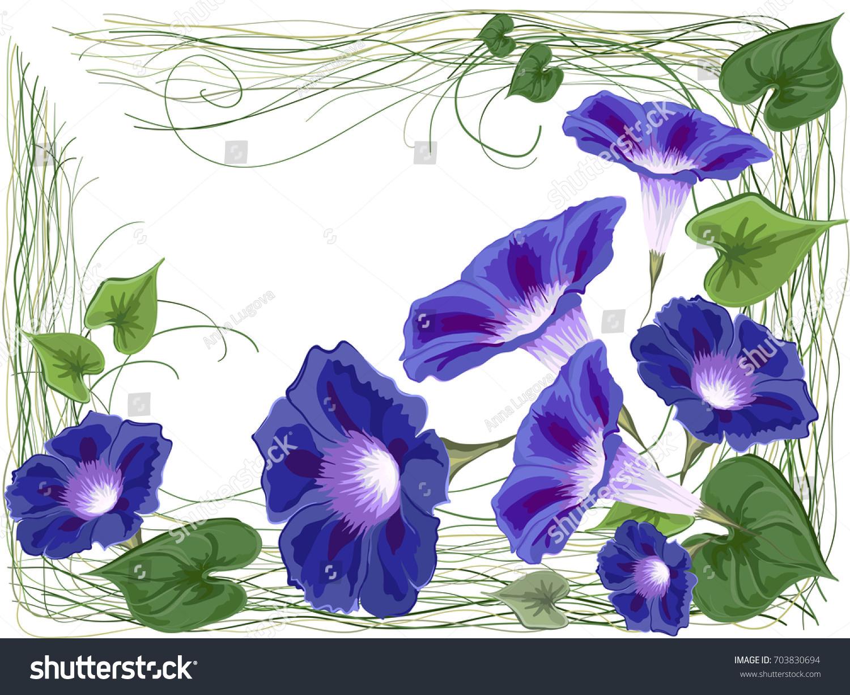 Flowers Bells Bindweed Ivy Painted White Stock Vector Royalty Free