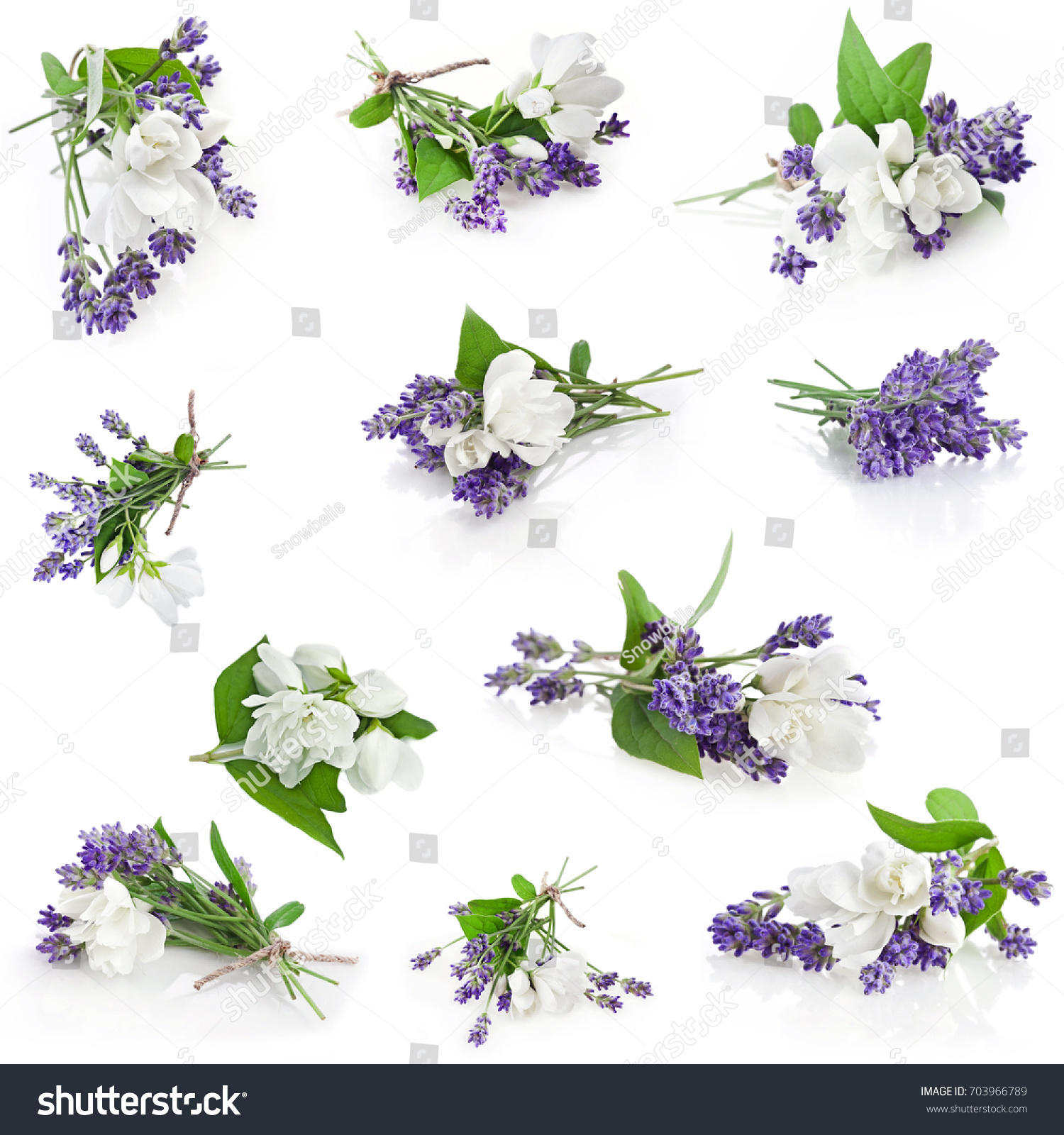 Bunch Lavender Jasmine Flowers Isolated On Stock Photo Royalty Free