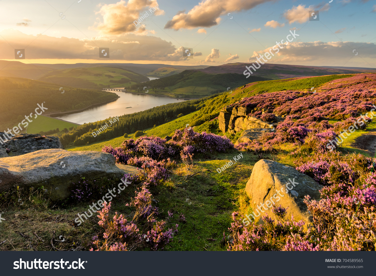Beautiful evening light on a summer evening at Bamford Edge in the Peak District National Park. #704589565