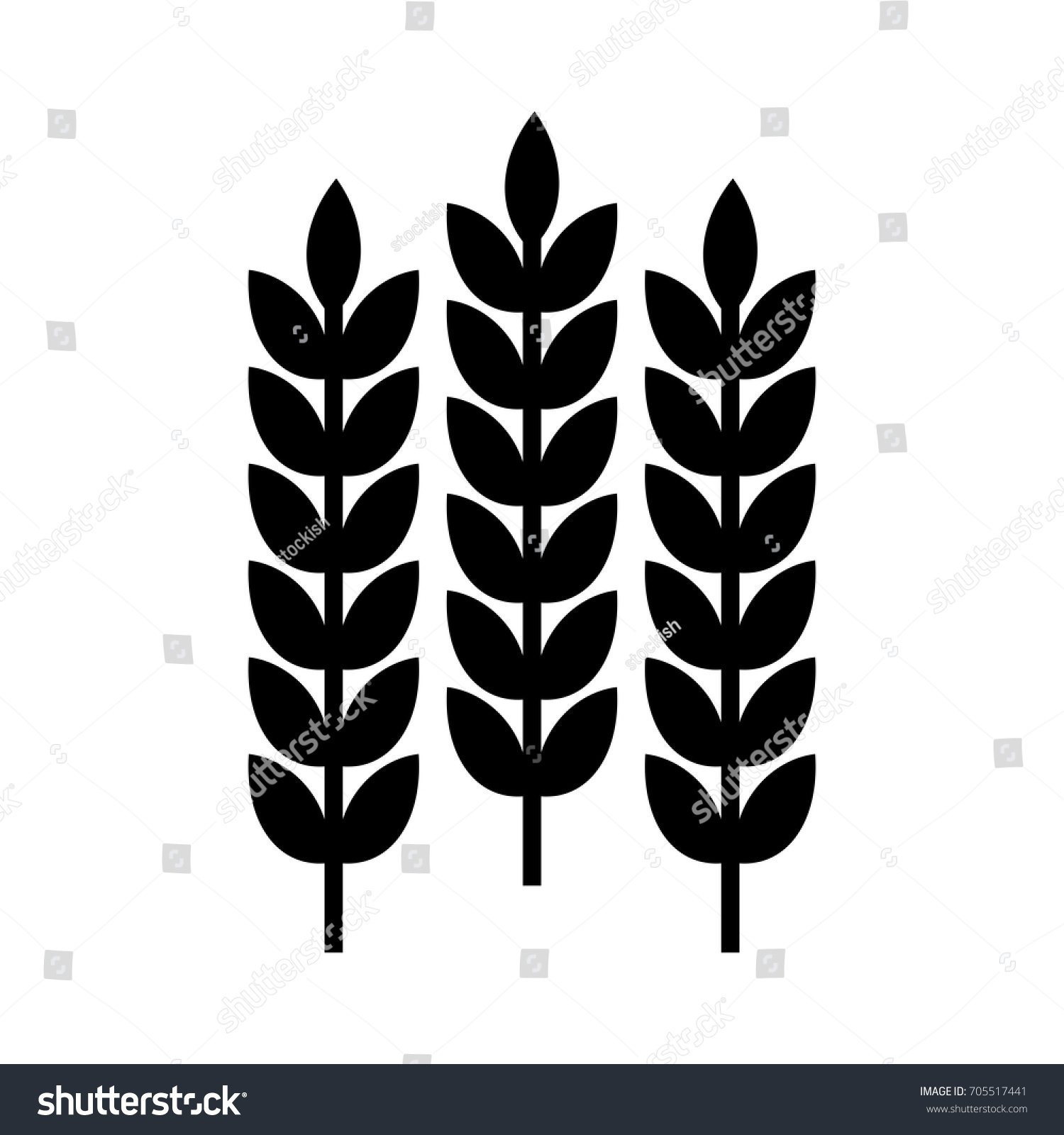 Wheat grain vector logo icon symbol stock vector 705517441 wheat grain vector logo icon and symbol buycottarizona Image collections