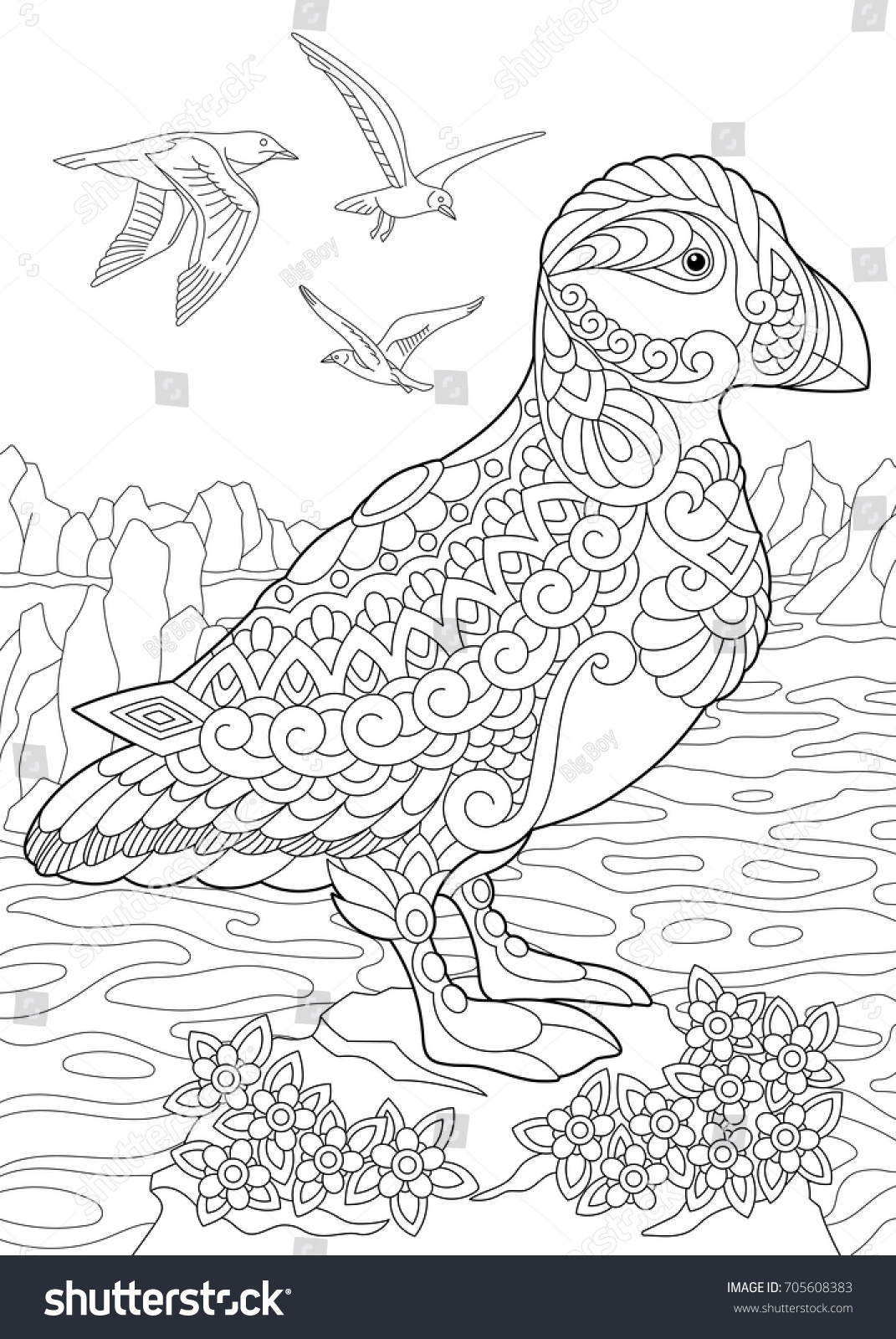 coloring page puffin holenesting auk seabird stock vector