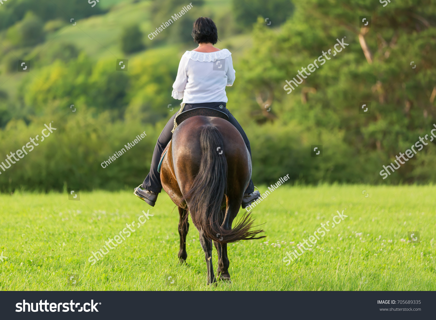 mature woman riding andalusian horse country stock photo 705689335