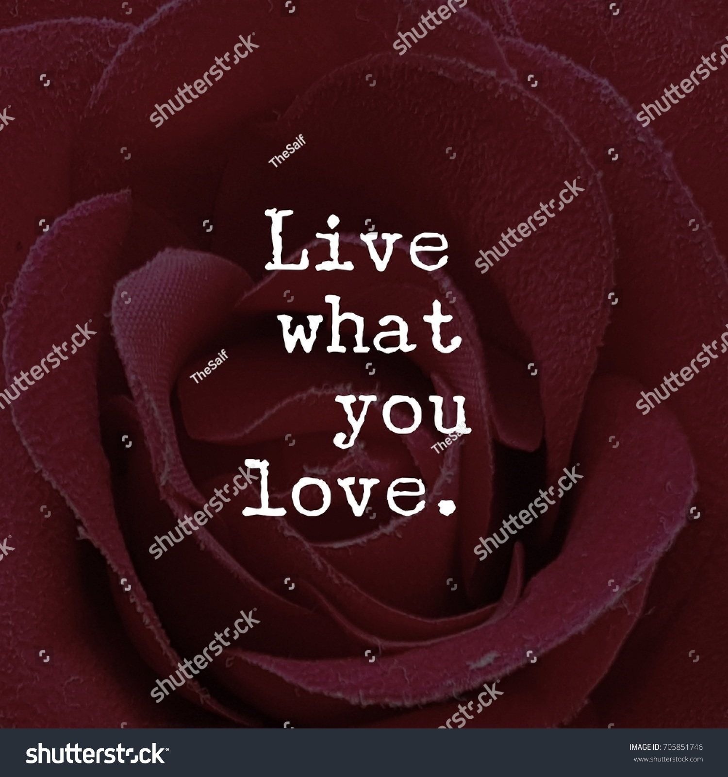 Inspiration Love Quotes Live What You Love Quote Inspirational Stock Photo 705851746