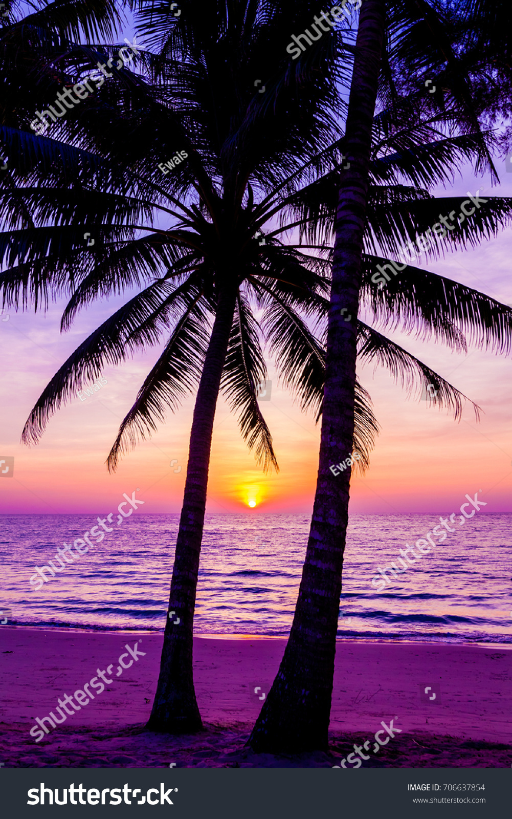 Palm Trees Silhouette At Sunset And Beach Beautiful Above The Sea