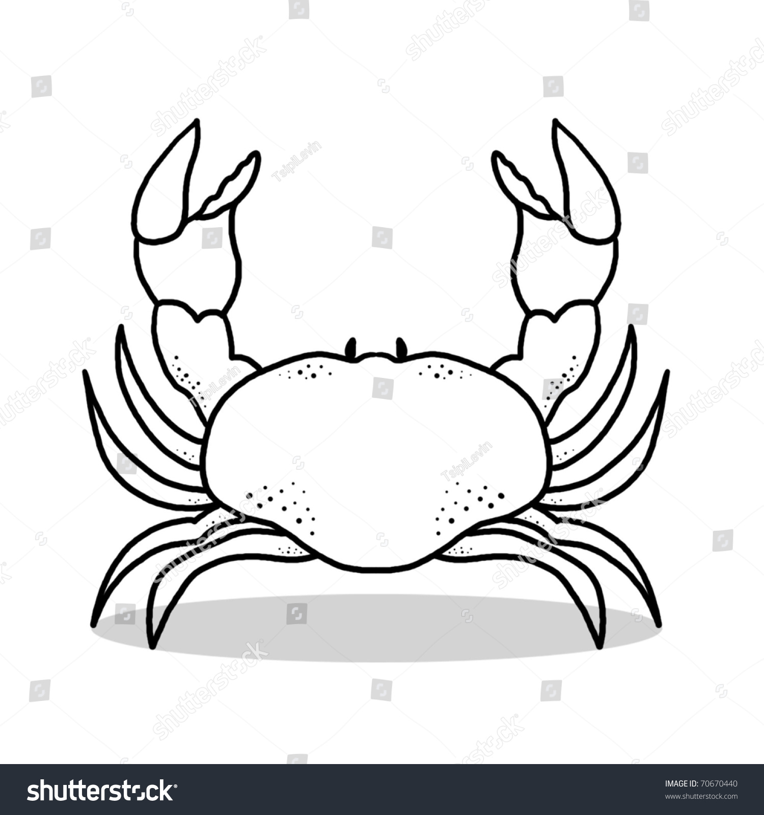 crab illustration outline drawing crab stock illustration sea creature clipart sea creature clipart free black and white