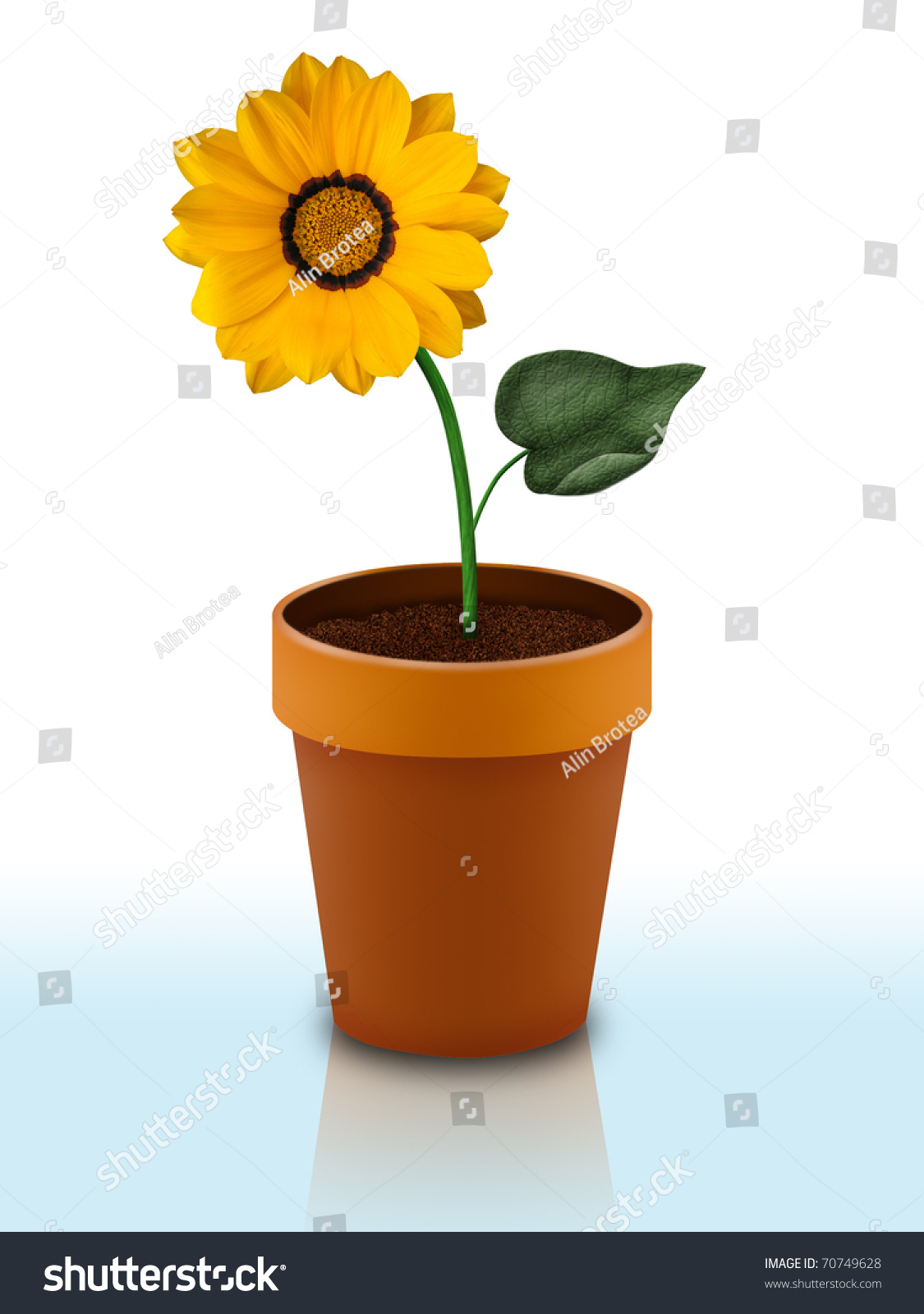 Ceramic Flower Pot Isolated On White Stock Illustration Royalty
